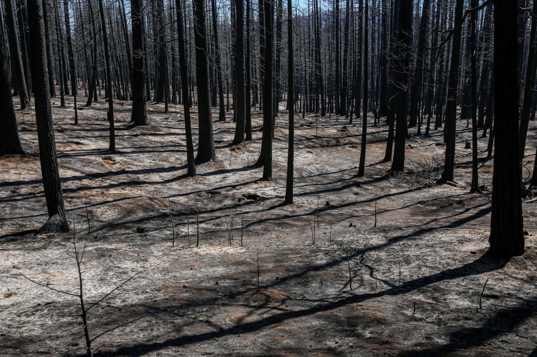 California fire season is over. Flash floods are next. It doesn't have to be this way