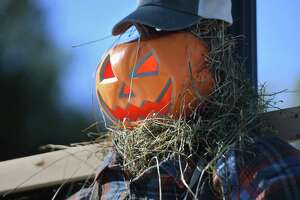 Scarecrows decorate every lightpole for the Downtown Milford Association's first annual scarecrow fest on Broad Street in Milford, Conn. on Tuesday, October 19, 2021.