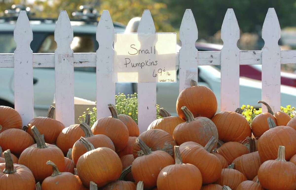 Pumpkins are on sale at the farmer's market at Robert Treat Farm in Milford, Conn., on Tuesday September 21, 2010.