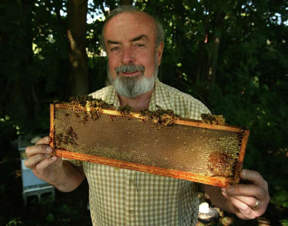Bee keeper Ralph Harrison of Milford says he can produce one hundred pounds of honey per year from one of his hives. Harrison sells his honey direct to customers out of his home and at local fairs. Photo: Brian A. Pounds / Connecticut Post