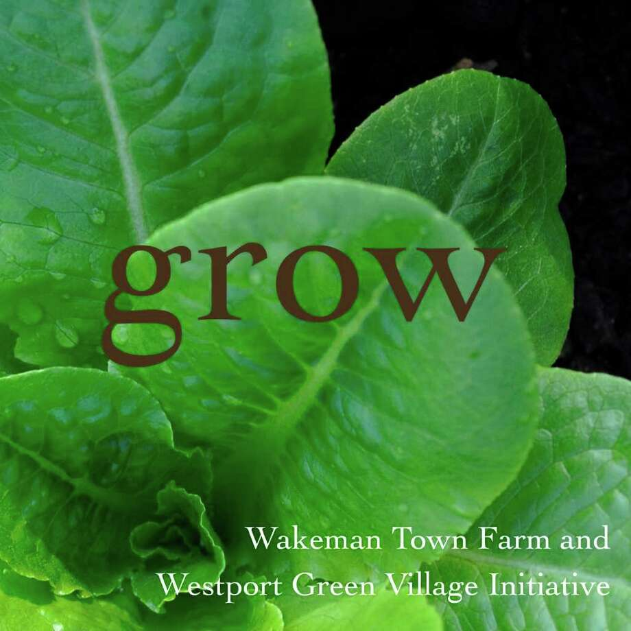 """""""Grow,"""" a book about the local food movement produced and photographed by Stacy Bass, was distributed to guests at the Green Village Initiative Harvest Festival in Westport on Saturday, Oct. 2, 2010. The book includes portraits of influential members of the movement, as well as pictures of food grown at the Wakeman Town Farm and machines used there. Photo: Contributed Photo / Westport News"""