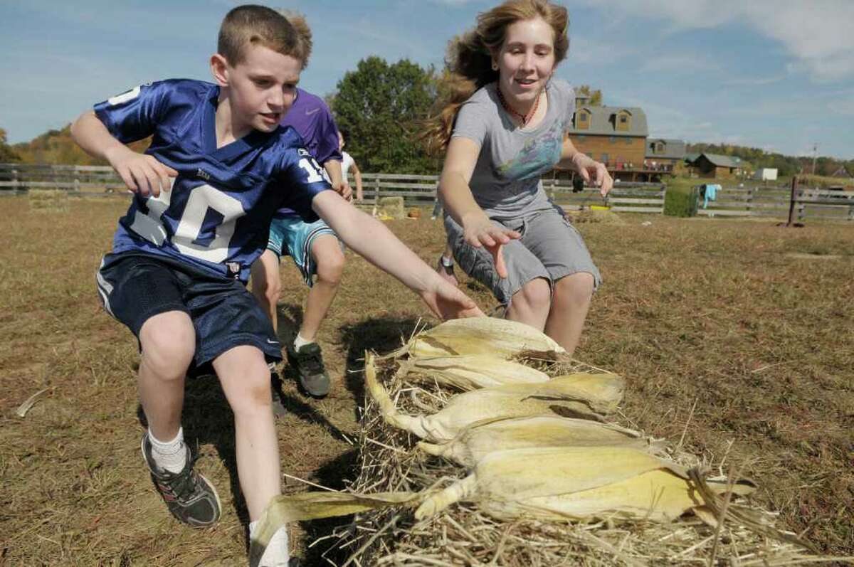 Adam Leonard, left, 9, and Morgan Treacy, 13, race for ears of corn as they take part in the corn shucking competition as part of the Family Farm Olympics at Liberty Ridge Farm in Schaghticoke, NY, on Monday, Oct. 11, 2010. (Paul Buckowski / Times Union)