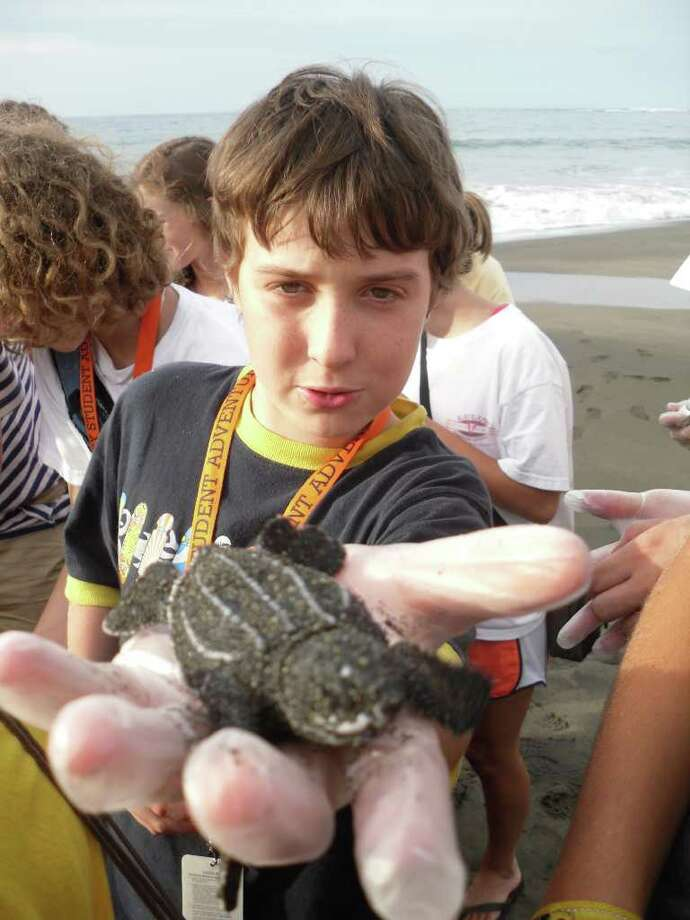 Malcolm Rowe, a Fairfield resident and middle school student at the Six to Six Magnet School in Bridgeport, holds a baby leatherback turtle while on a trip to Costa Rica for a summer program in July 2010. Photo: Contributed Photo / Fairfield Citizen contributed