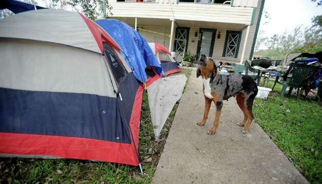 A dog guards its owner's belongings from strangers. According to neighbors,  residents of the home were living in tents after Hurricane Ike damaged their home in rural Hardin County. Tammy McKinley