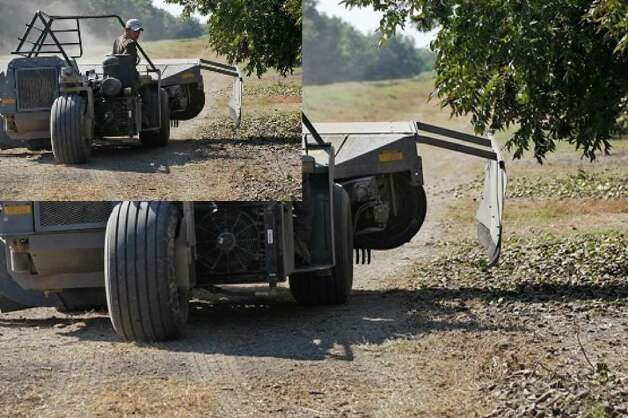 Antonio Sanchez works a sweeper while harvesting pecans at the Bar D River Ranch near Poth.