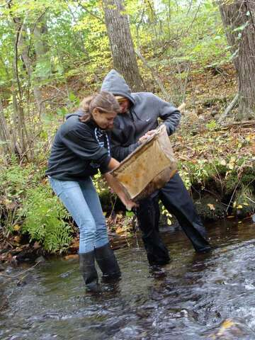 Sampling the Saugatuck: Water quality 'bugs' checked - Westport News