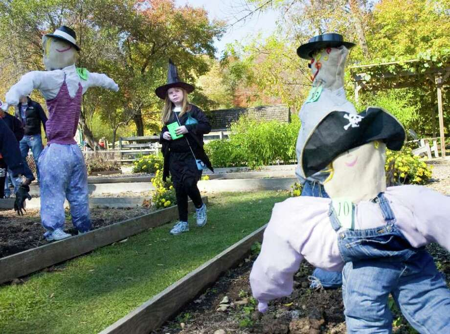Shannon Lyons, 9, eyes the array of scarecrows on show at the Stamford Museum & Nature Center's signature Harvest Festival Sunday, October 17, 2010. The event features hayrides, apple cidering demonstrations, story telling, face painting and a costume parade. Photo: Keelin Daly / Stamford Advocate