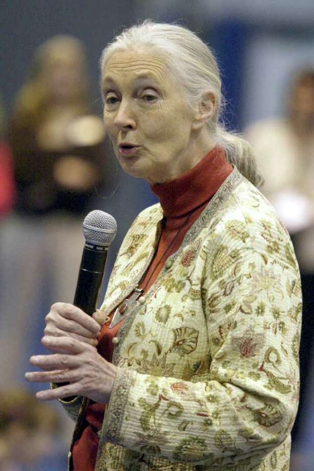Dr. Jane Goodall talks to students involved with the Roots and Shoots project at the O'Neil Center at West Conn in this 2007 file photo. Photo: File Photo / The News-Times File Photo