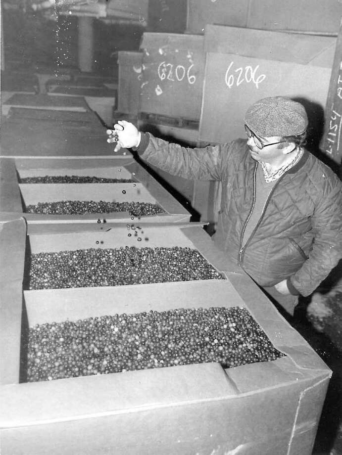 "A 1984 story in the Times Union says: ""Chances are that if you buy your Thanksgiving turkey at a local supermarket, it has passed through Albany Central's Warehouse."" And, as this photo of supervisor Bob Canniff shows, a few milion cranberries were stored there, too. (Times Union archive))"