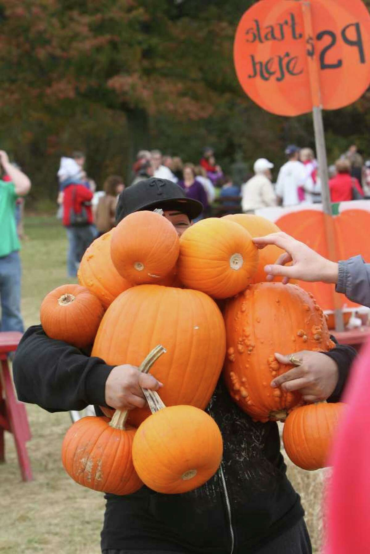 Ali Perez, of Bridgeport, carries as many pumpkins as she can at the Jones Tree Farm UNICEF Family Festival on Sunday, October 24, 2010.