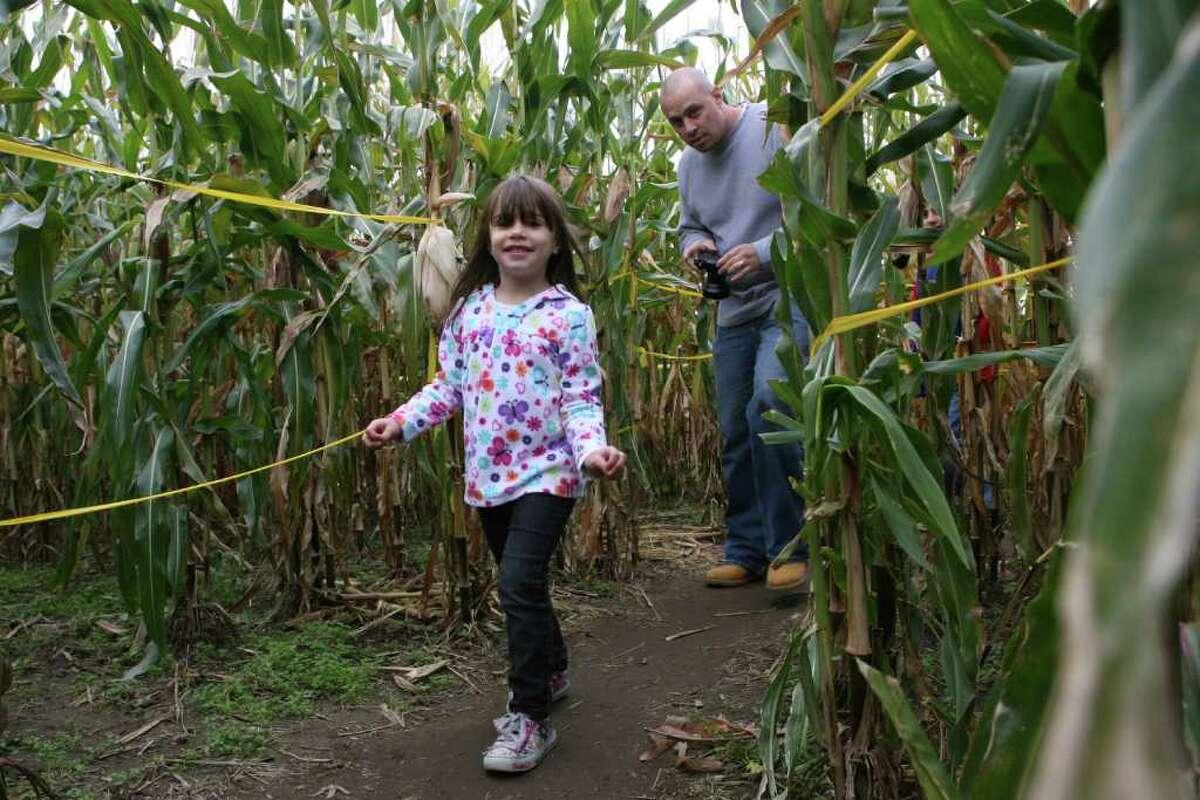 "Scott's Yankee Farmer, East Lyme 436 Boston Post Rd. Open Thursday to Monday through Oct. 31 Theme: ""Pirate treasure"""