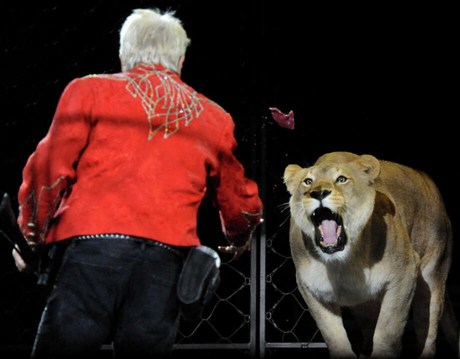 Brian McMillian tosses a treat to one of his lions during the Ringling Brothers and Barnum and Bailey Circus at Ford Park in Beaumont, Friday. Tammy McKinley/ The Enterprise