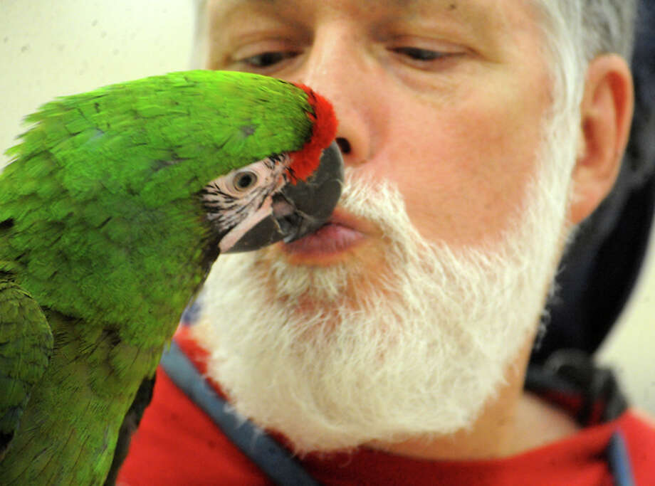 Bill Christian kisses one his birds on display during the Triangle Bird Club Show at the Port Arthur Civic Center in Port Arthur, Saturday. Tammy McKinley/ The Enterprise