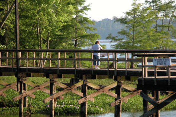 Visit Martin Dies Jr. State Park to camp and see the sights.