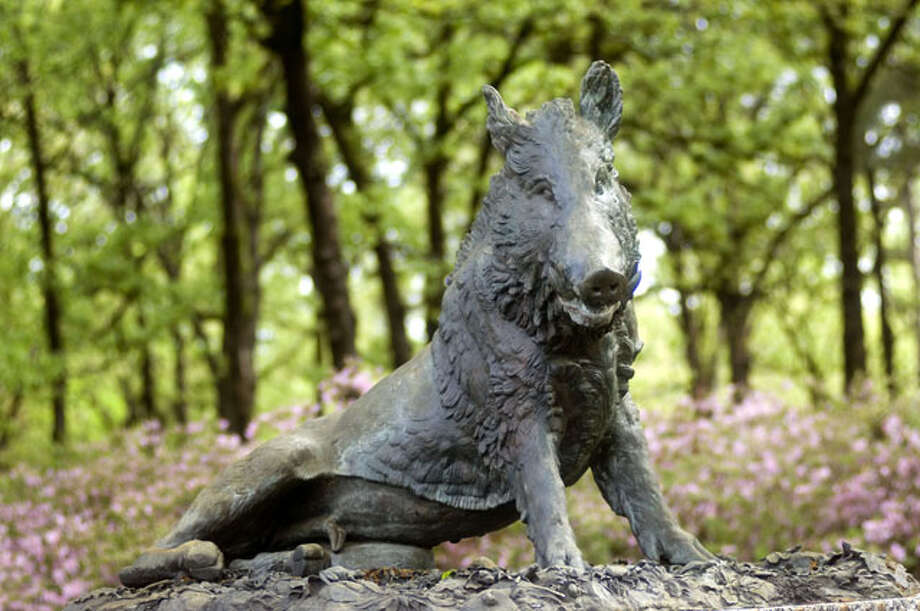 """""""Wild Boar Fountain Piece"""" or """"Il Porcellino"""" by Giuseppe Benelli   ?is in the gardens of  the R.W. Norton Art Foundation of Shreveport, Louisiana. Credit: R.W. Norton Art Gallery / Betty Luman"""