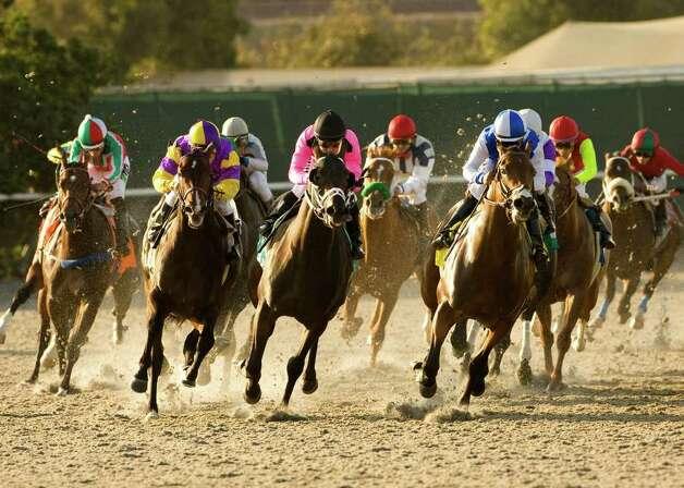 tvg horse racing