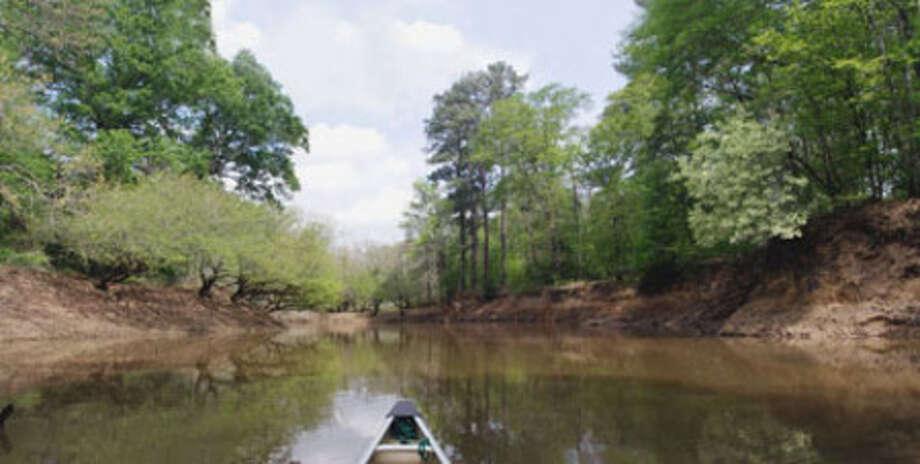Neches River scene