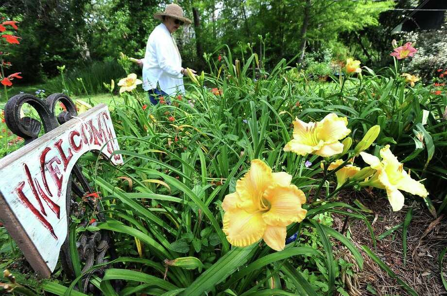 Barbara Riley points out different plant life in her garden while standing near Daylilies at her home in Beaumont. The lilies bloom for only one day. Guiseppe Barranco/The Enterprise