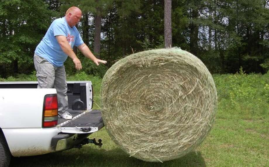 Tony Baird, 43, of Lumberton puts out more hay Thursday afternoon at the Village Creek Cemetery on U.S. 69 Near the Hardin/Tyler county line. Two of Baird's five thoroughbred horses have been roaming the cemetery and adjacent property for the past month. Julie Shehane/The Enterprise