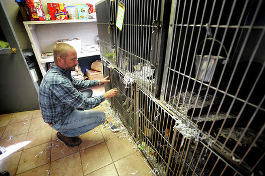 Max Mixson lets a border collie out of its cage to play on Monday, December 29, 2008. Enterprise file photo