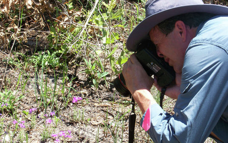 David Lemke, a botanist from Texas State University at San Marcos, shoots photographs of the Texas trailing phlox, an endangered plant native to East Texas. Lemke was visiting the Roy E. Larsen Sandyland Sanctuary on Friday as part of a Big Thicket Chautauqua. Sarah Moore/The Enterprise