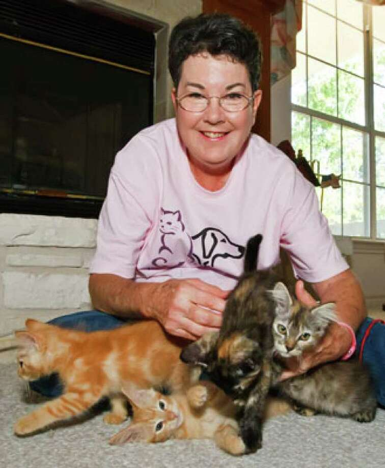 Mary Finch, with the Helotes Humane Society, has her hands full with a group of darling kittens currently available for adoption at her residence.