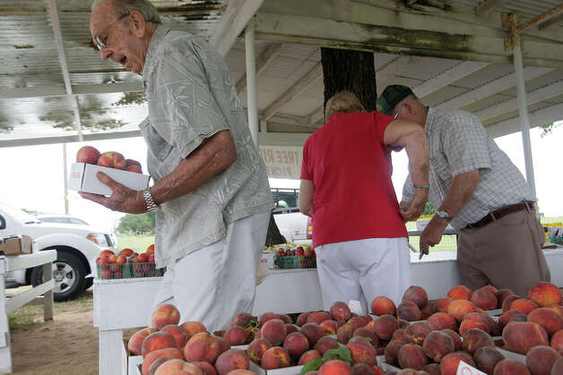 Joe Clark, of San Antonio, buys a box of peaches at the Donald Eckhardt Orchards. / glara@express-news.net