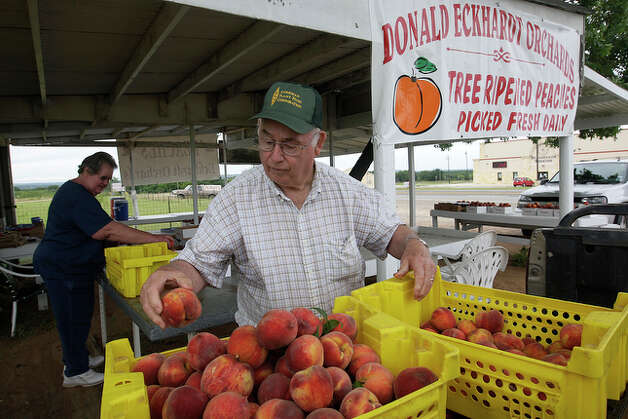 Donald Eckhardt and his wife, Carol, sort peaches at their stand on Highway 87 outside Fredericksburg. / glara@express-news.net