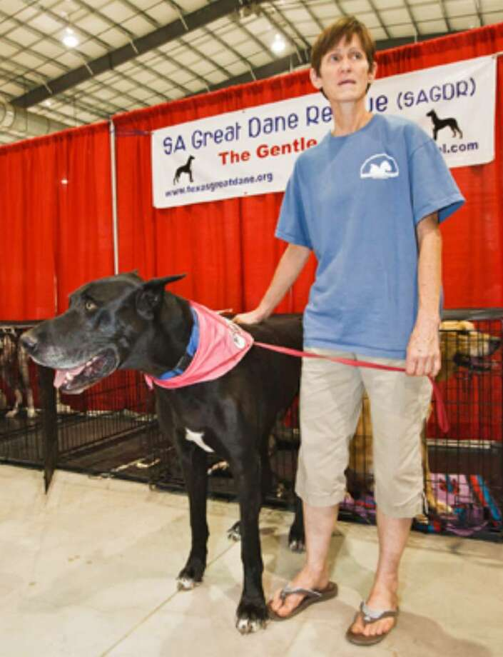 Jo Ellen Cockroft, founder of San Antonio Great Dane Rescue, with Dane, a five-year-old Great Dane in need of a good home, at the San Antonio Pet Expo at the Freeman Coliseum Exposition Hall on July 31, 2010.
