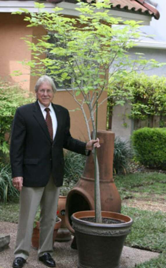 Therapist Gordon Hudson of San Antonio received this tree 10 years ago in Oklahoma City. Now he's taking it back for the 15th anniversary of the federal building bombing.