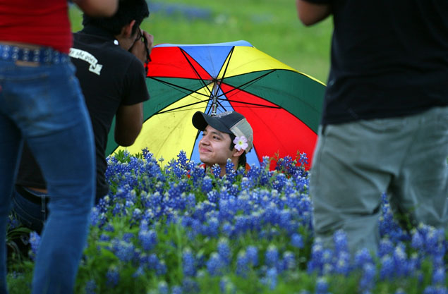 Bluebonnets In San Antonio And Beyond San Antonio