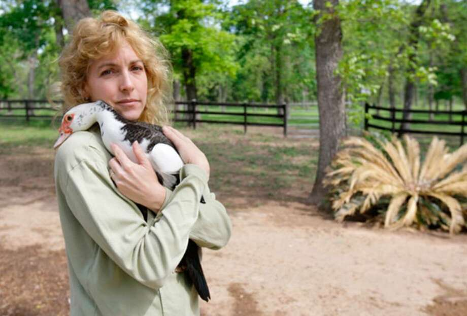 """Tobi Kosanke holds DuckyDucky, one of her Muscovy ducks, at her Krazy K Farm in Hempstead. """"Our lives are ruled by ducks, and we like it that way,"""" she said. The ducks eat mosquitoes and other pests, and Kosanke sells their eggs."""