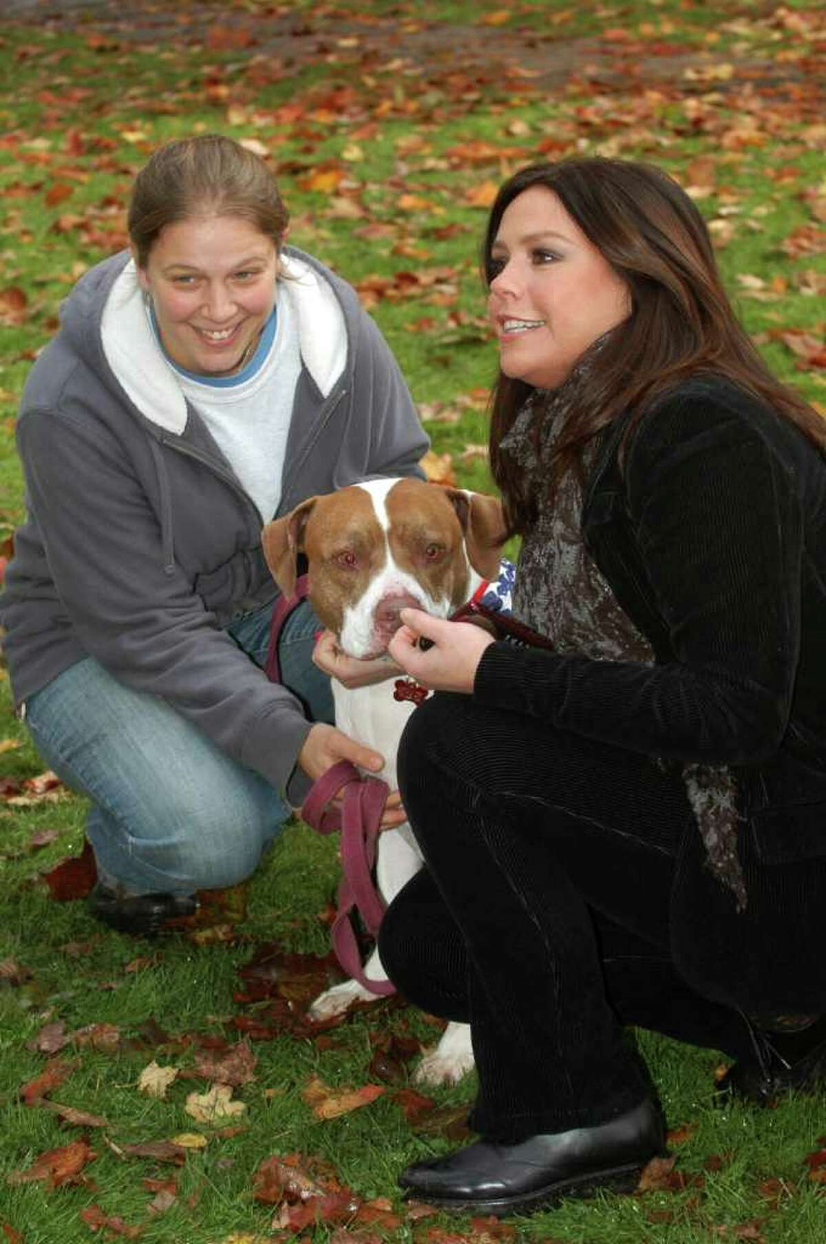 Rachael Ray stopped by the Adopt-A-Dog event on Sherman Green in Fairfield, Conn. on Friday November 5, 2010. After posing with Kristen Alouisa and 61/2 year old Tyke, one of the dogs up for adoption, Rachael made a $7,500 donation to the cause before heading over to Borders Bookstore for a book signing.