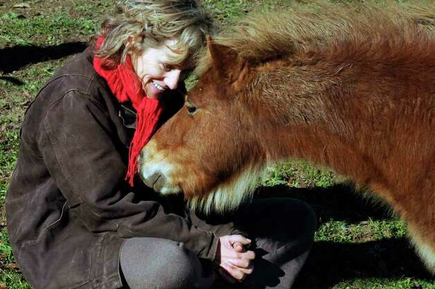 Catskill Animal Sanctuary Director Kathy Stevens greets one of the 10 miniature horses rescued from a Wisconsin farm and now being rehabilitated at the Saugerties site. ( Michael P. Farrell/Times Union ) Photo: Michael P. Farrell