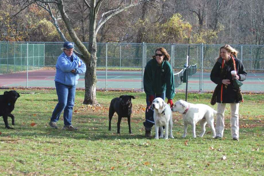 Darien residents regularly bring their dogs to Cherry Lawn Park. Photo: Jeanna Petersen Shepard / Darien News