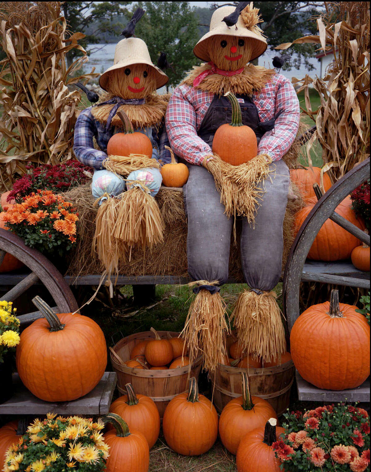6. Prop up some scarecrows These friendly guys instantly make your yard more inviting.
