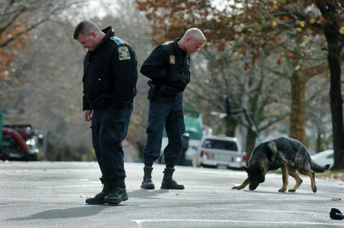 Police use a canine to track spots of blood found along Seabreeze Drive in Stratford Conn. on Friday November 19, 2010. An intruder broke into a home at 40 Seabreeze Drive leaving a trail of blood. The intruder scuffled with the home's occupant, Robert