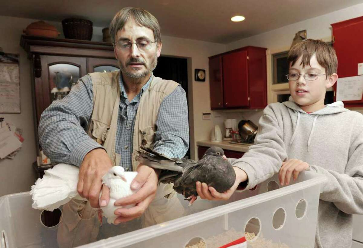 Malcolm Ford, of Bethel, and his son Liam, 10, have about 50 fantail pigeons that they raise. Photo taken Tuesday, Nov. 16, 2010.