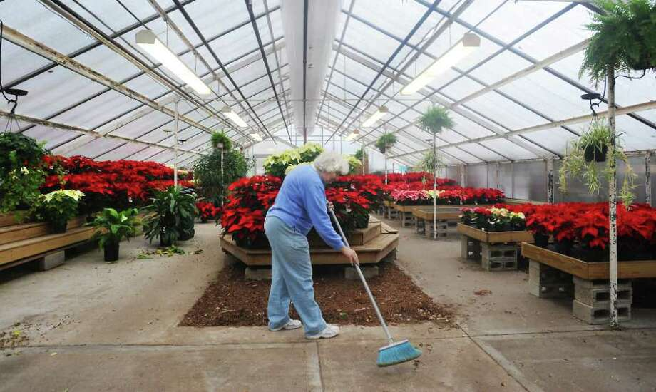 Lois Slocum sweeps the greenhouse at Springdale Florist as they load poinsettias inside and Christmas trees outside for the holiday season in Stamford, Conn. on Friday November 26, 2010. Photo: Kathleen O'Rourke / Stamford Advocate