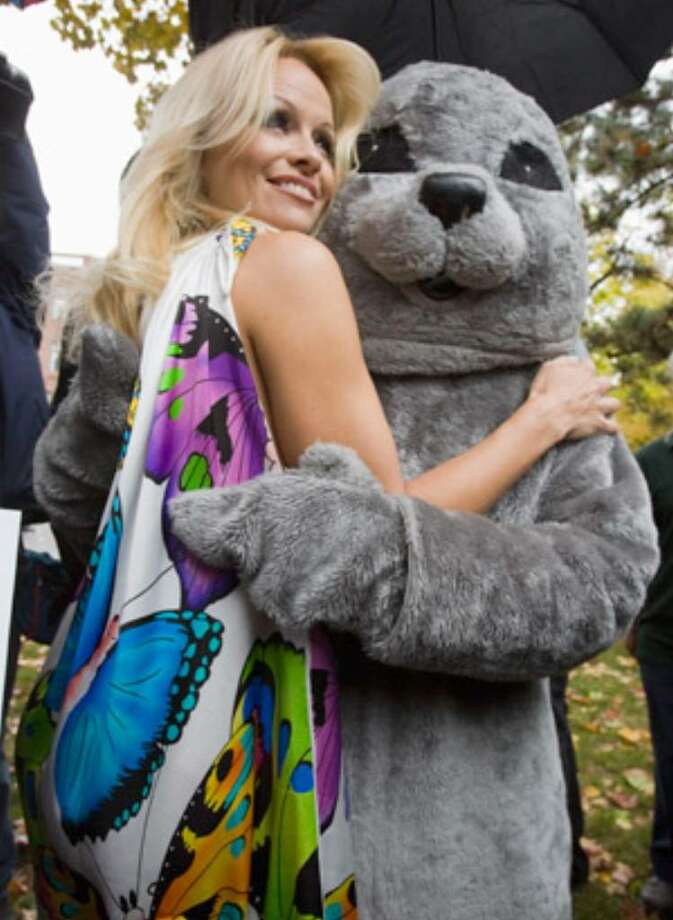Pamela Anderson hugs a seal mascot as she launches PETA's new anti-sealing campaign in Toronto on Friday.