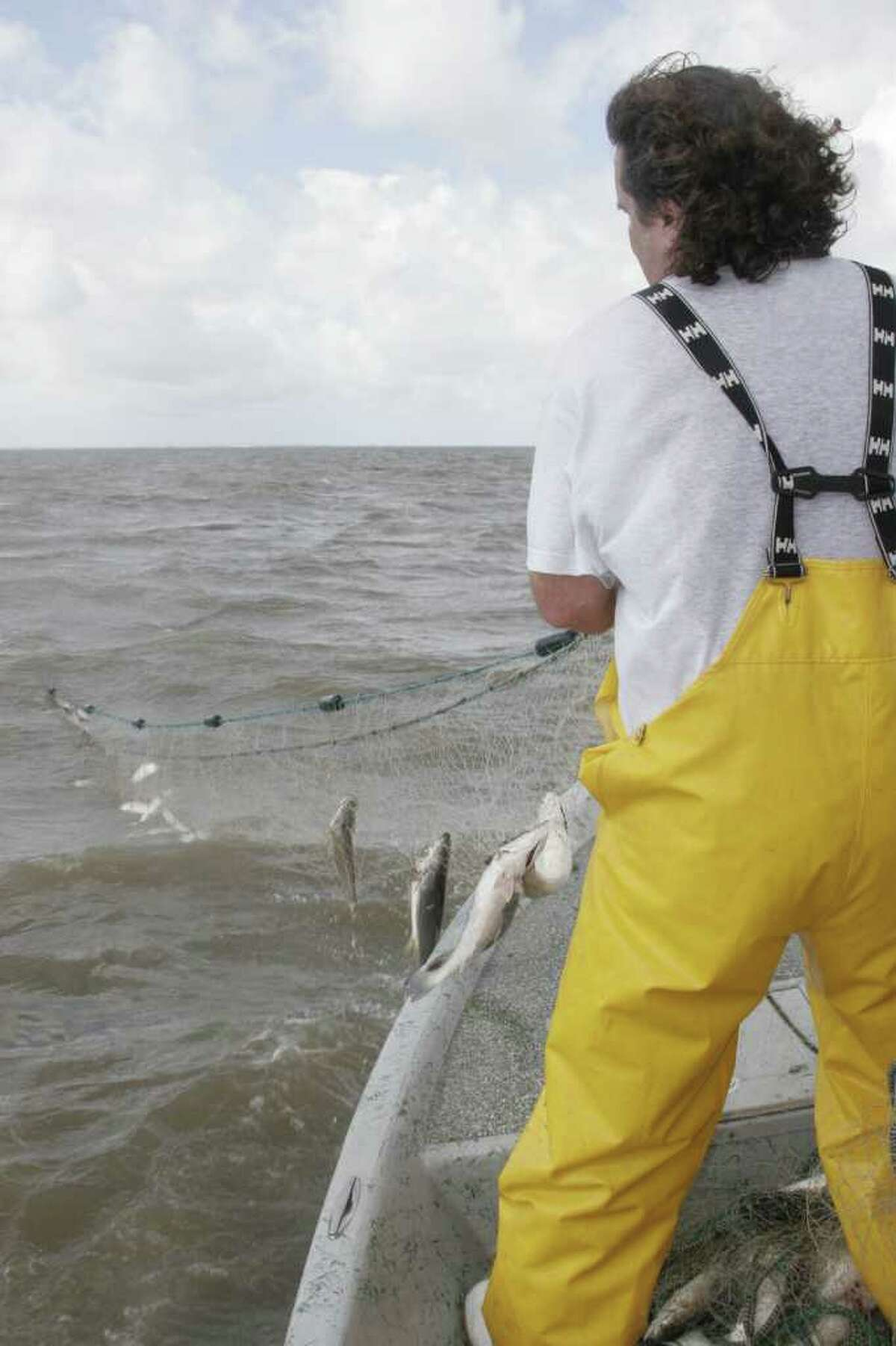 Data gathered through standardized gill net surveys by Texas coastal fisheries managers support what many anglers say they have seen: abundance of speckled trout in West Matagorda, San Antonio and Aransas bays have sharply declined over the past several years. Shannon Tompkins/ Houston Chronicle