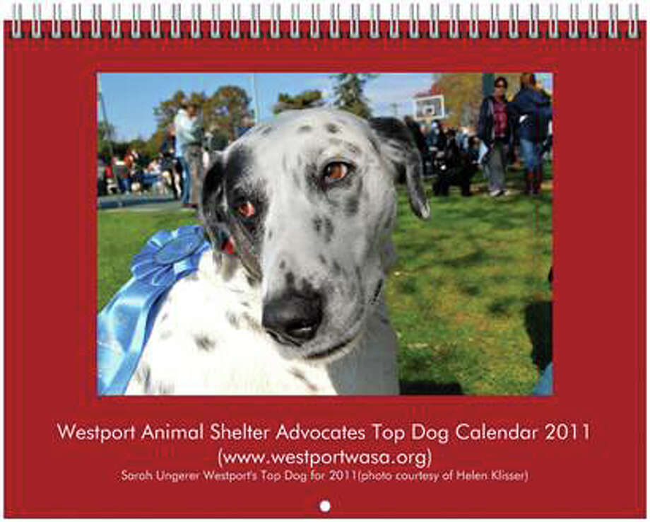 The cover of the Westport Animal Shelter Advocates Top Dog Calendar 2011. Profits from calendar sales will support a myriad of things, including the construction of outdoor runs at Westport Animal Control. Photo: Contributed Photo / Westport News