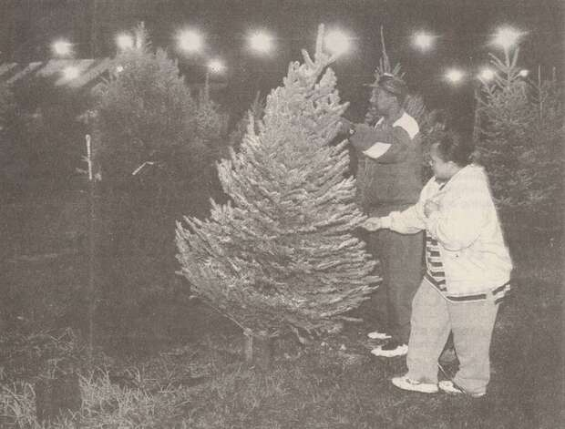 """Beaumont Farmer's Market employee Linda Hill helps Vincent Rocio of Beaumont look for a Christmas tree around 10 p.m. Tuesday night at the market on Texas 105."" File photo Dec. 19, 1998"