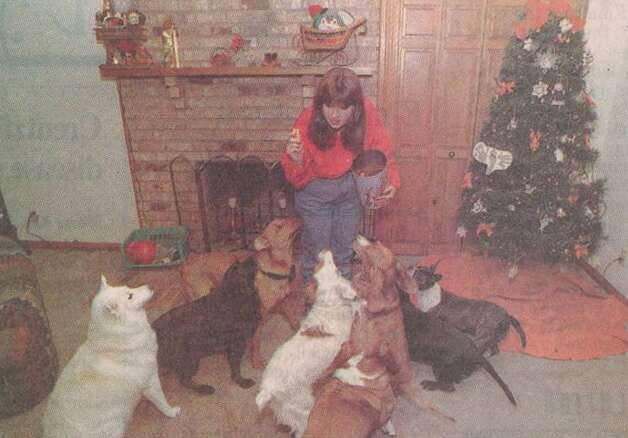 """Phyllis Wheeler gives holiday treats to eight of her dogs."" File photo Dec. 20, 1998"