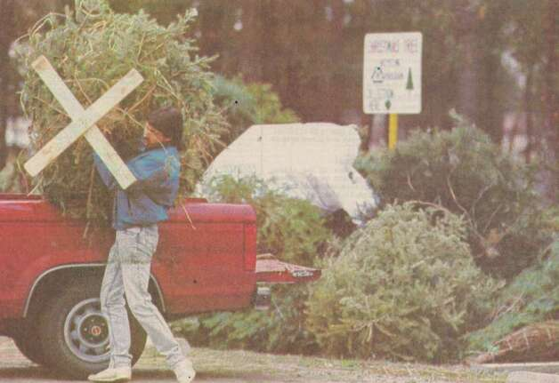 """Jay Bernard lifts a Christmas tree from his truck Wednesday to add to the stack of discarded trees at Rogers Park."" File photo Dec. 27, 1990"