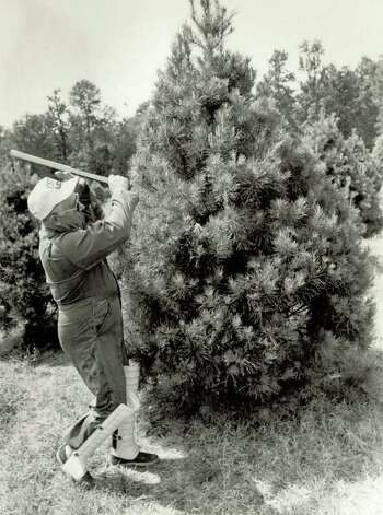 """James Bozeman takes a whack at a tree for trimming purposes."" File photo Sept. 2, 1984"