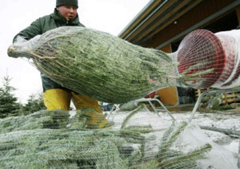A vendor wraps a Christmas tree at a farm shop in Effretikon, Switzerland.