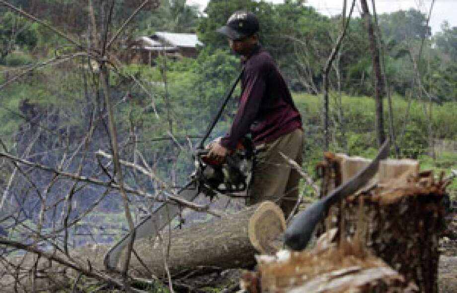 A worker uses a chainsaw to cut an acacia log while clearing an area near Bukit Tiga Puluh, Riau, Central Sumatra, Indonesia.