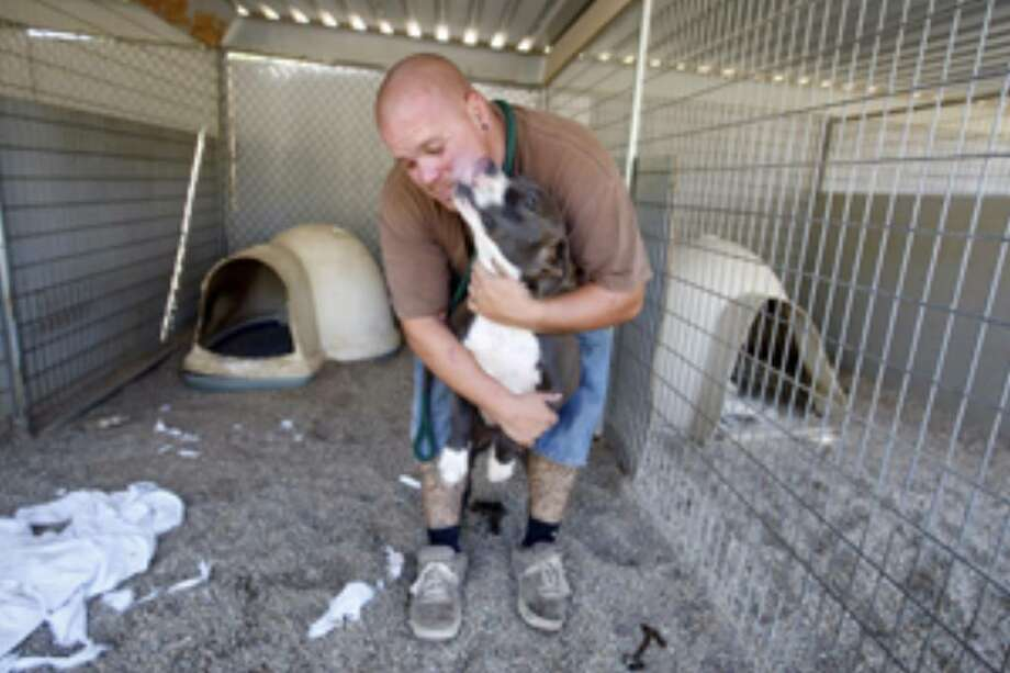 Parolee William Spigelmyer gives a hug to Wasco a 1 1/2 year-old pit bull while cleaning his kennel at Villalobos Rescue Center.
