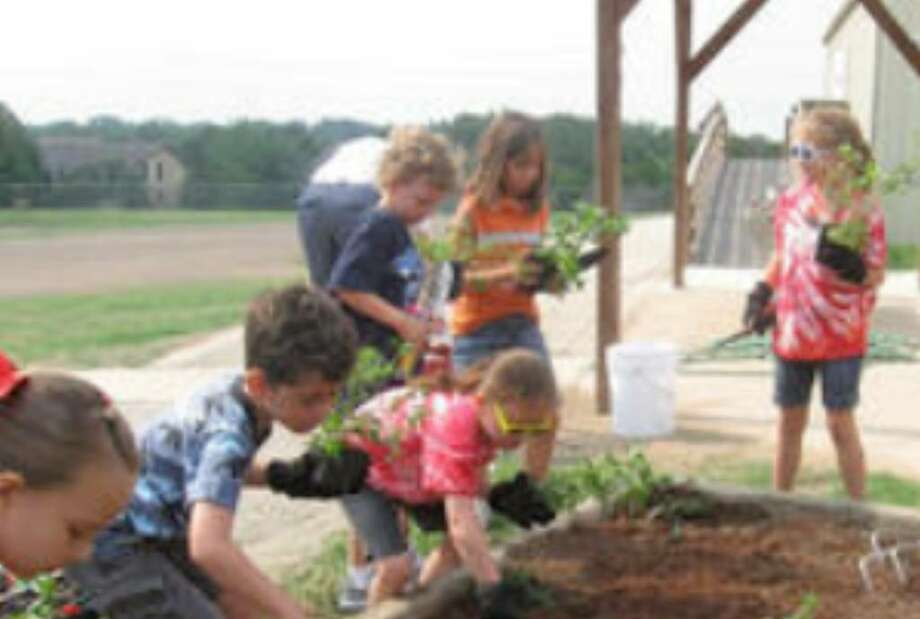 Encino Park Elementary School students tend to a community garden on campus.
